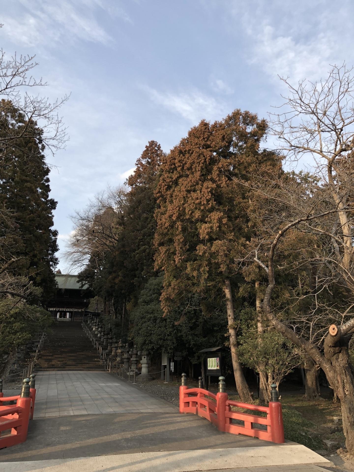 3月東照宮1.jpg